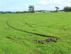 What happened to my braking? A sticky end to the landing roll on a nice wet grass strip!