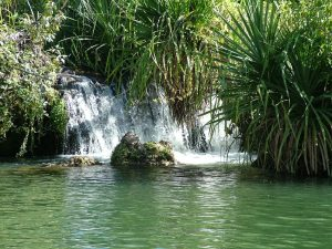 Natural waterfalls at the end of your paddle.