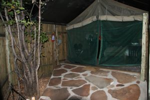 Our home at the Tented Camp of Mashatu, in Botswana's Limpopo Valley.