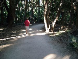 Enjoy the shady walk from your cabin or campsite down to the thermal pool.