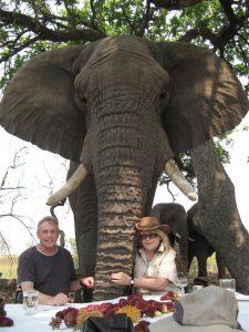 African Air Safari