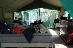Inside our tent at Mashatu.