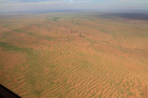 North of Menindee - green striped plains