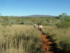 Setting off along the path to one of the waterholes.