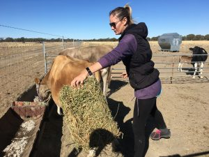 Lane will take you out on her morning ritual feeding all her four-legged family ... and there are loads of them.