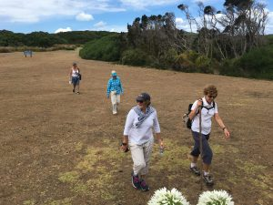 Bushwalking - they've got that covered here. Pip, Judy, Kate and Catherine have just walked 9 kms from the airstrip to the beach house. By choice. Go figure.
