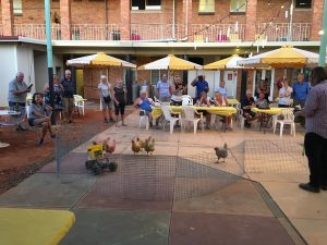 OK, so then wander out to the beer garden at around 5pm. It's time for the nightly chicken races.